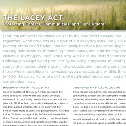 Protesting Forests, Communities, and Our Climate. factsheet