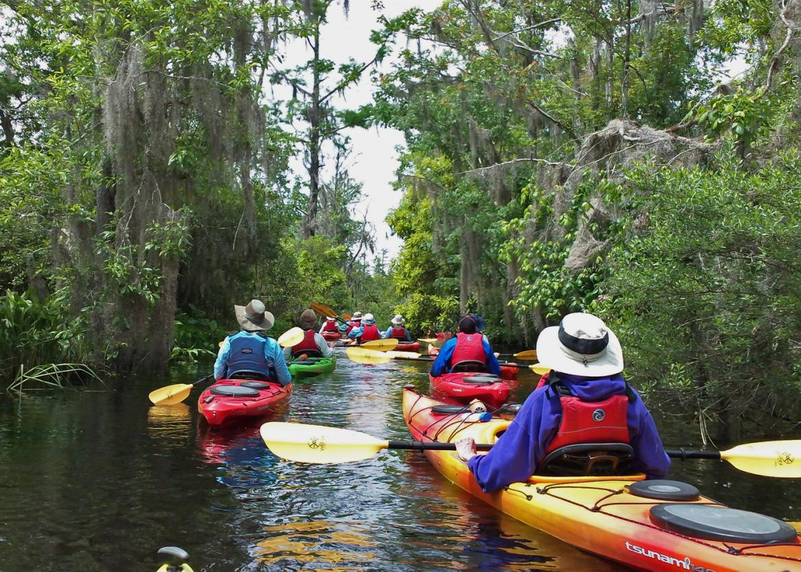 Kayaking Florida S Magical Rivers And Springs Sierra