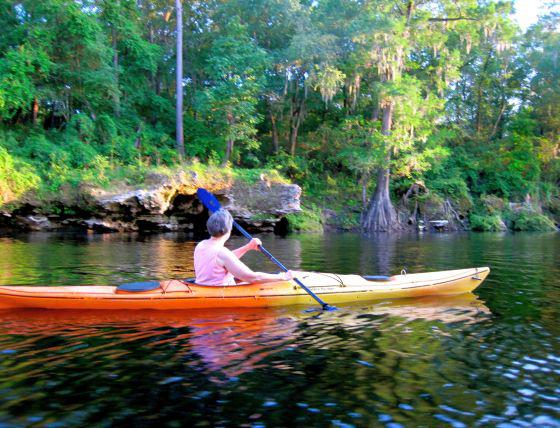 Kayaking Florida's Greatest Rivers and Springs
