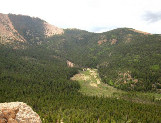 Pikes Peak Revegetation, Colorado