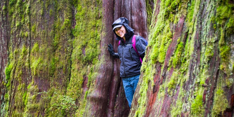 Lodge Trips Hiking Vacations Sierra Club