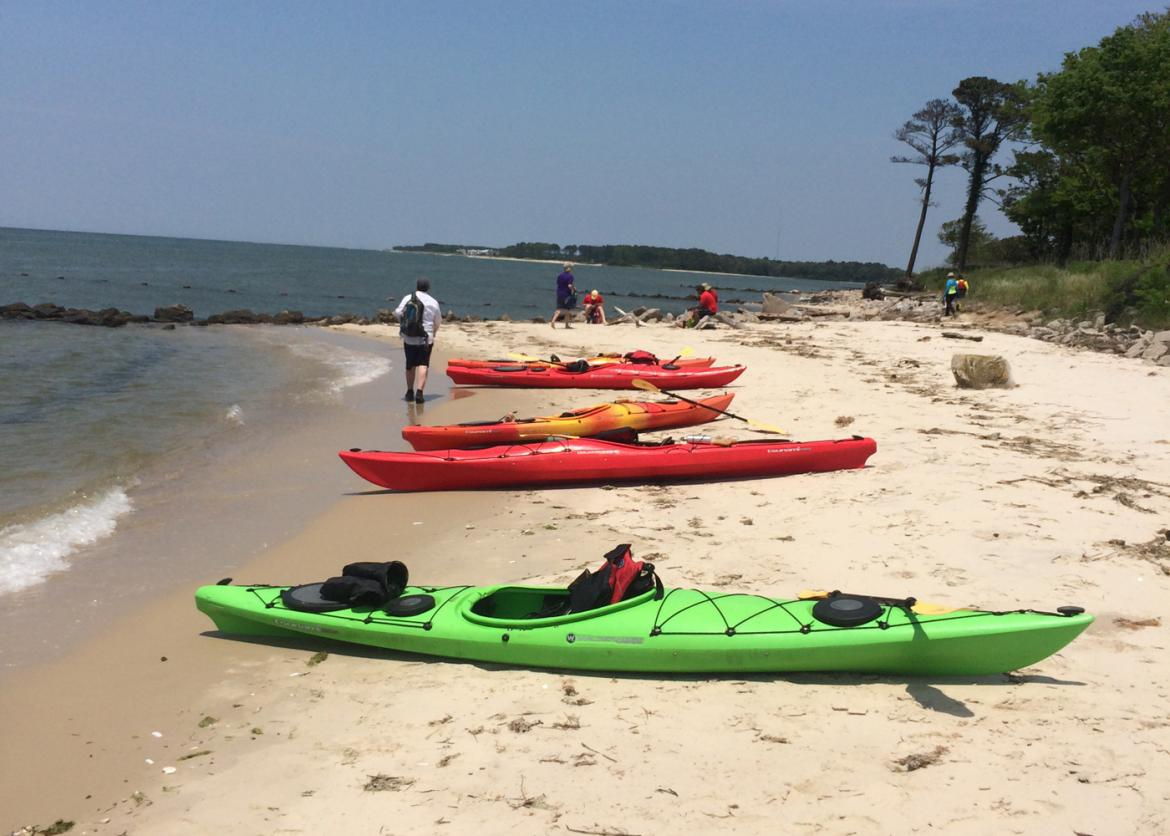 Kayak And Explore Floridas Gulf Coast Sierra Club Outings - The florida kayaking guide 10 must see spots for paddling