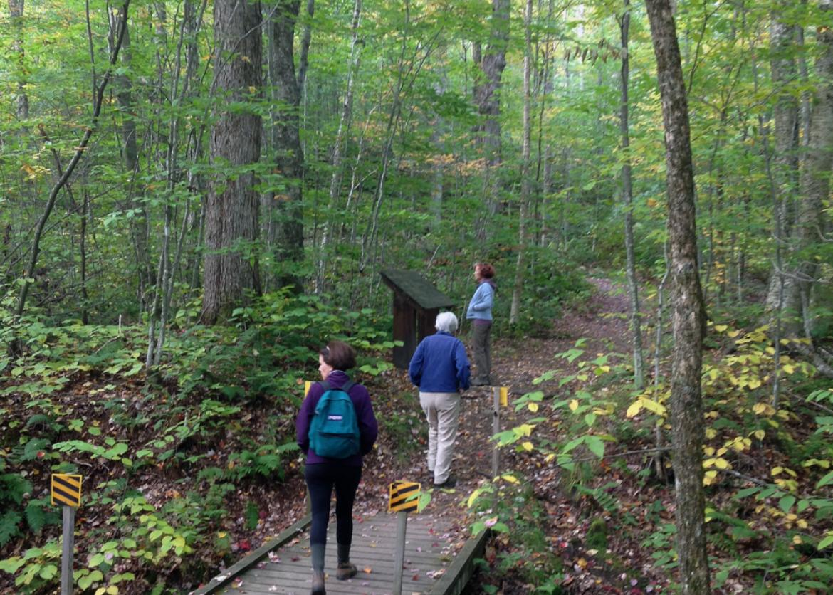Costa Rica Vacations >> Fall Hiking Green Mountain NF Vermont | Sierra Club Outings