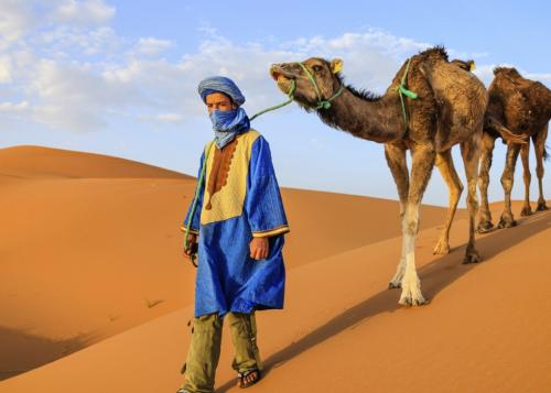Berber man and camels in the Sahara Desert, Morocco