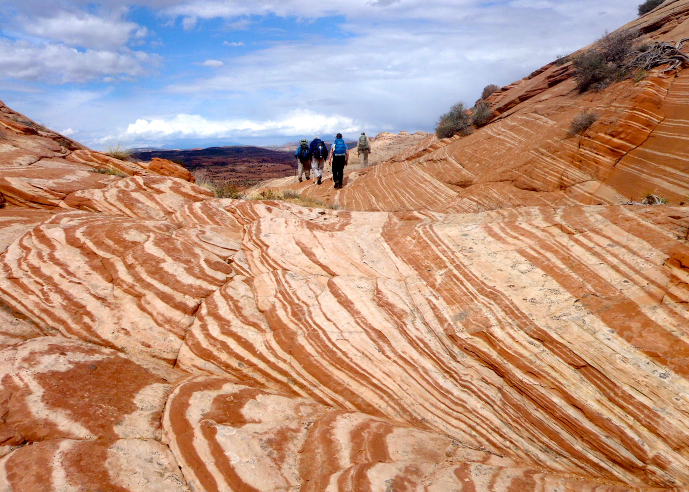 Hike Grand Staircase Escalante With Llamas Sierra Club