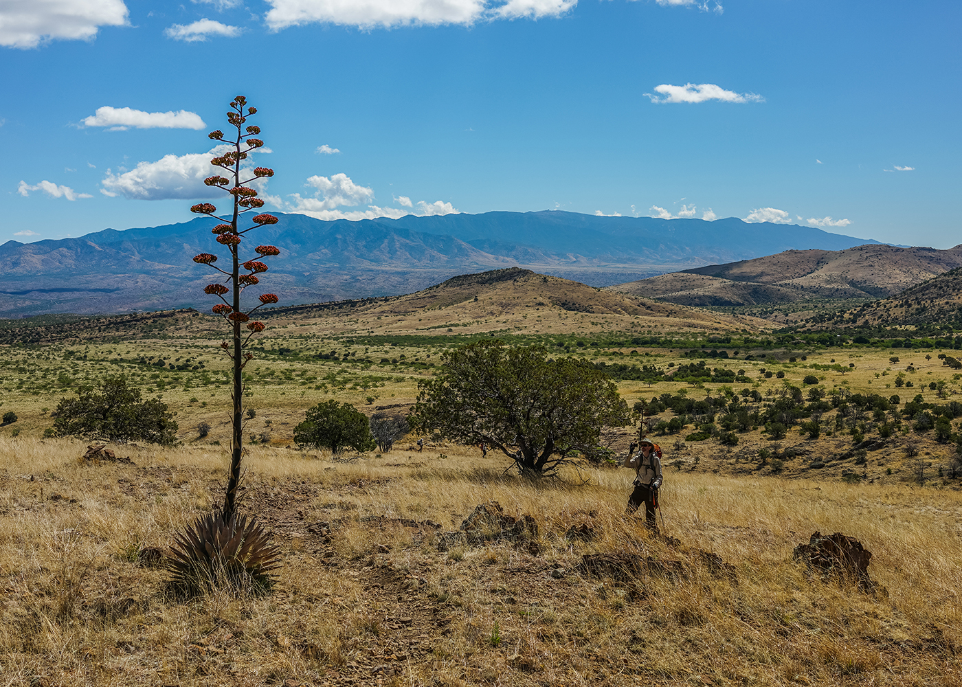 New Pioneer Travel >> Backpack the Galiuro Mountains & Redfield Canyon – Sierra Club