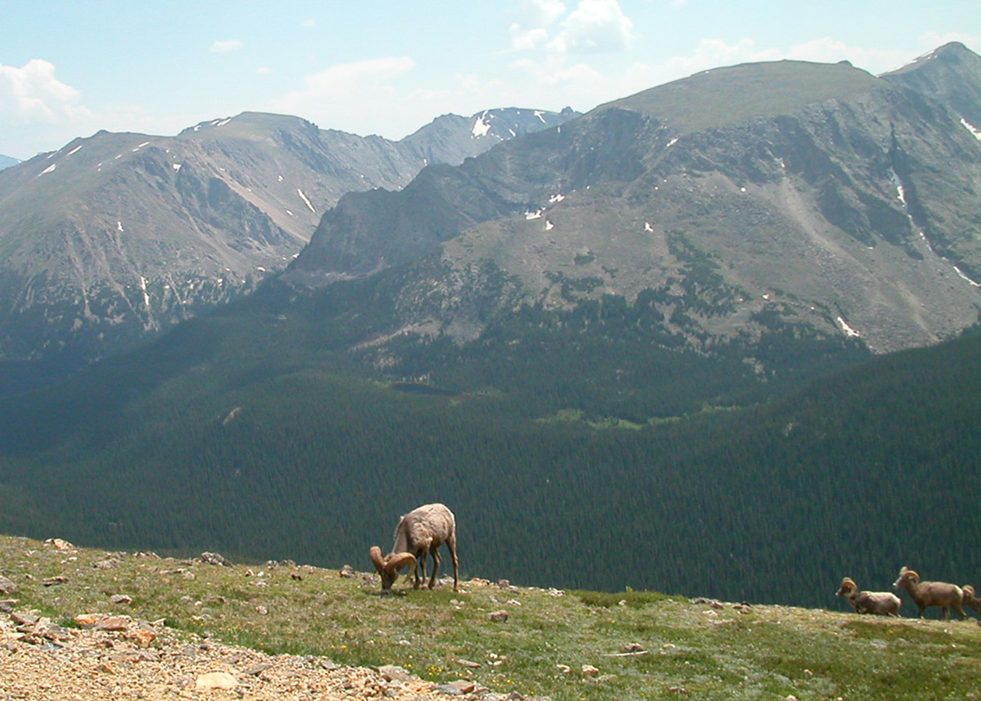 Backpack Rocky Mountain National Park | Sierra Club Outings