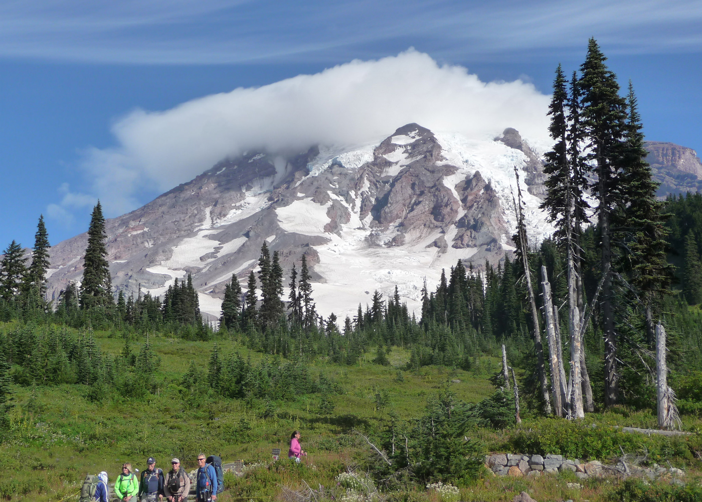 Mt Rainier Natural History Camp Washington Sierra Club