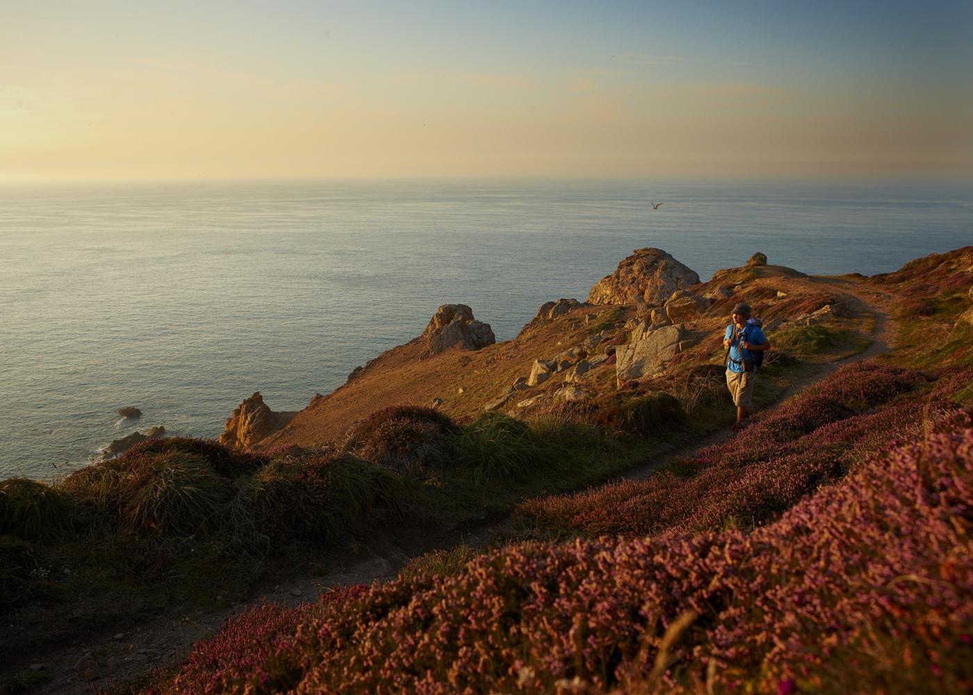 Sierra Club Channel Islands