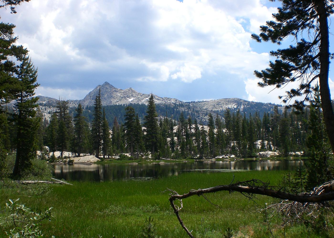 Hiking The Emigrant Wilderness And Northern Yosemite