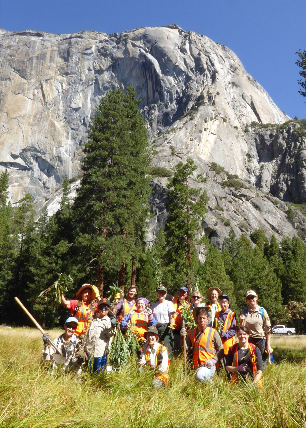 volunteer vacation yosemite valley sierra club outings. Black Bedroom Furniture Sets. Home Design Ideas