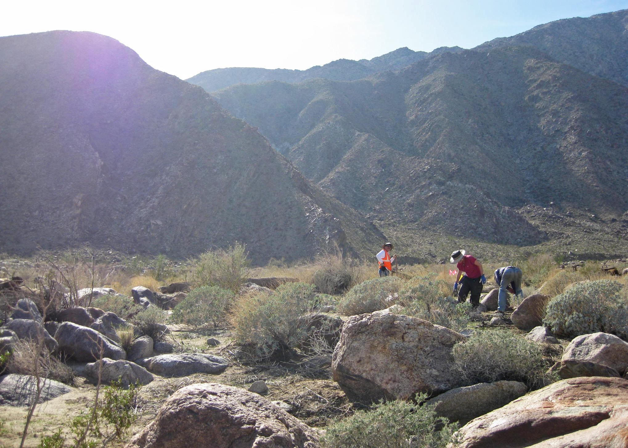 Release Of Liability Ca >> Volunteer Vacation in Anza Borrego, California – Sierra Club