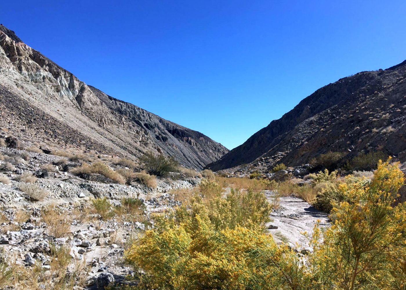 Volunteer Vacation California Desert | Sierra Club Outings